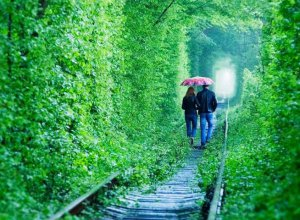 The route is romantic. Tunnel for lovers and more
